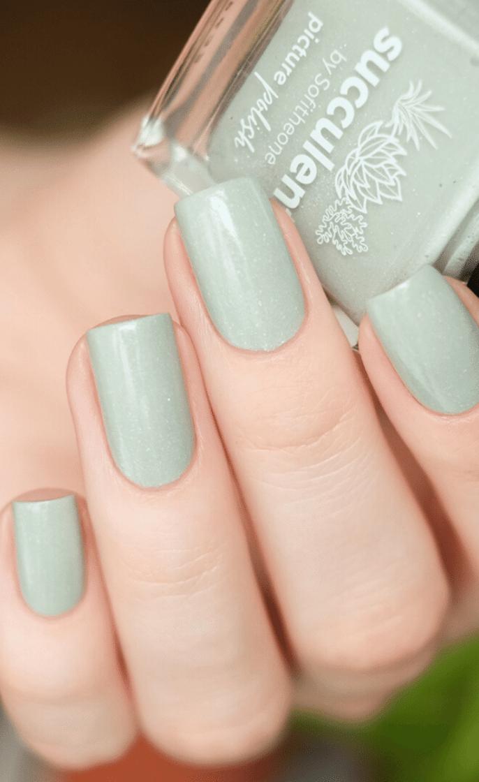 Review | Succulent
